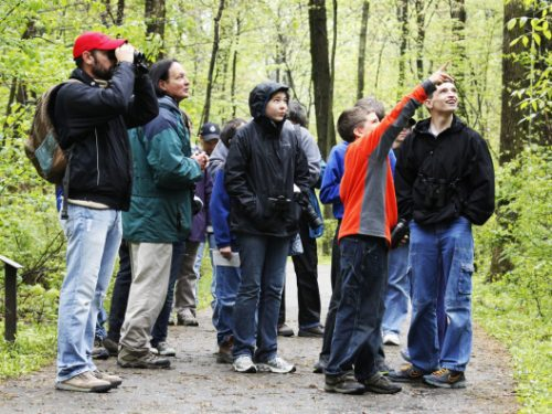 Young birders detect a bird as they hike at Blendon Woods Metro Park, Saturday April 21, 2012.  (Dispatch  Photo by Jeff Hinckley )_ _
