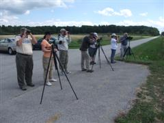 Avid Birders search intently under sunny skies