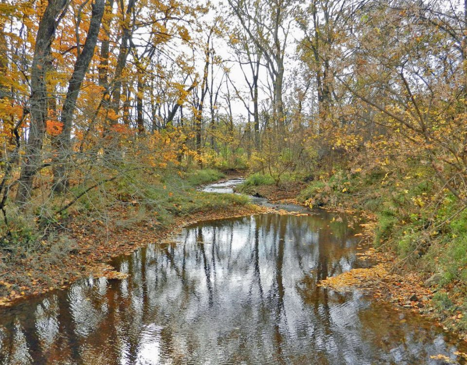 Delaware Preservation Parks - Blues Creek Preserve