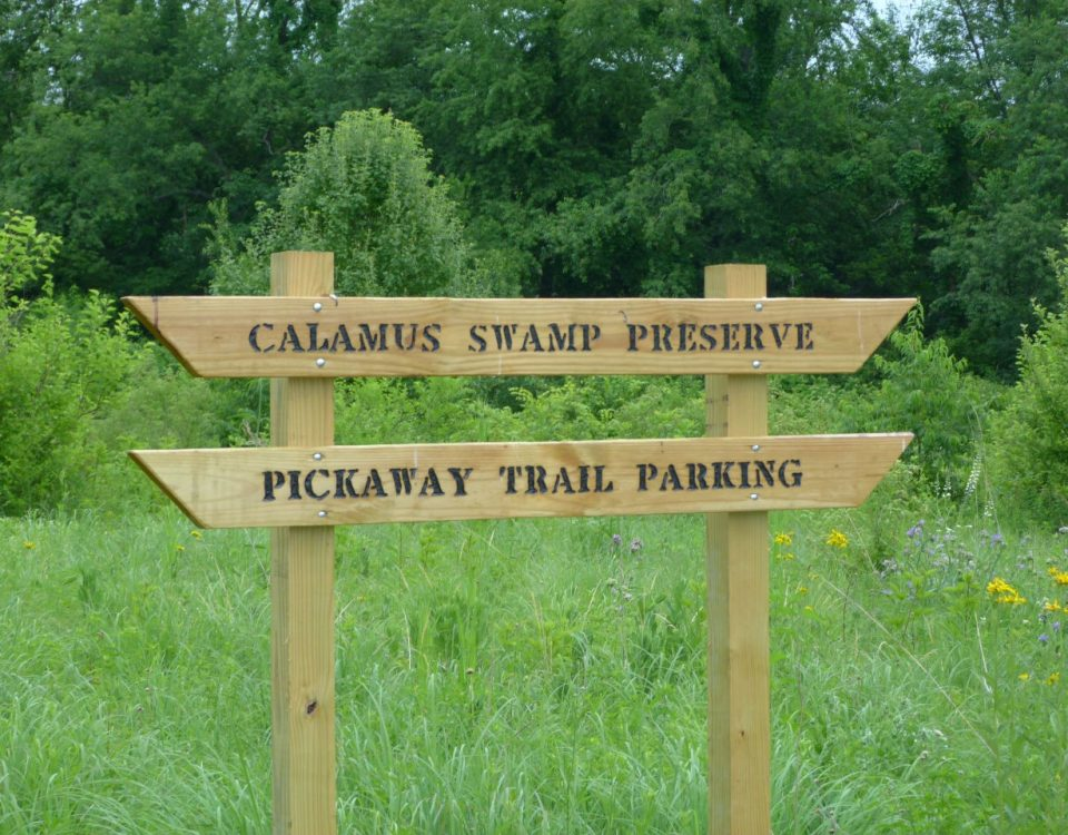 Sign at the entrance to Calamus Swamp