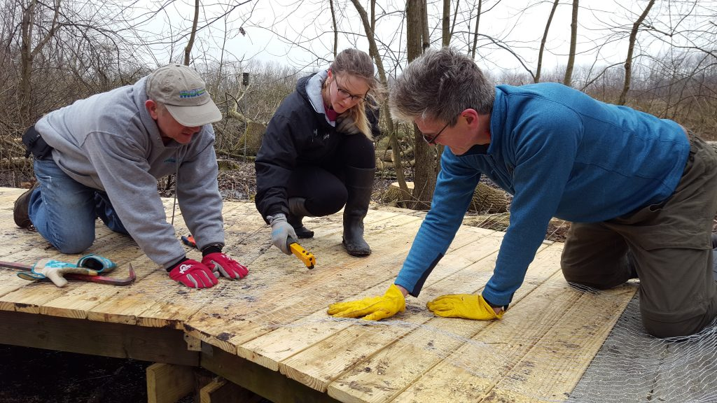 Calamus Swamp: adding chicken wire tp the boardwalk for extra traction