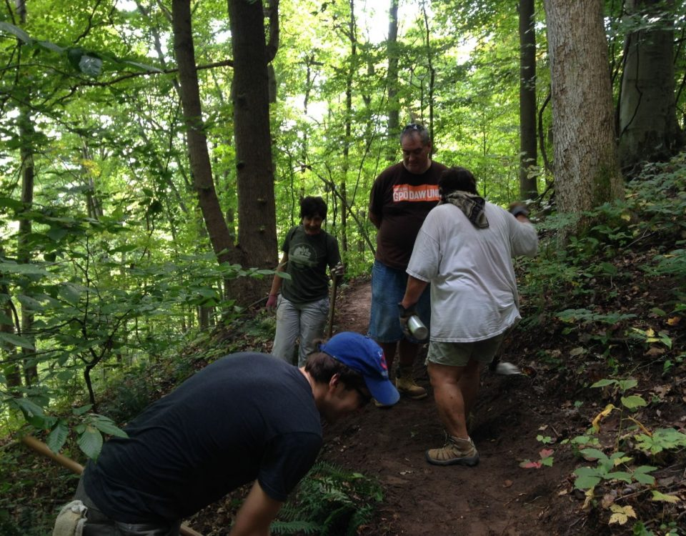 SiP volunteers working the trail at Rhododendron Cove