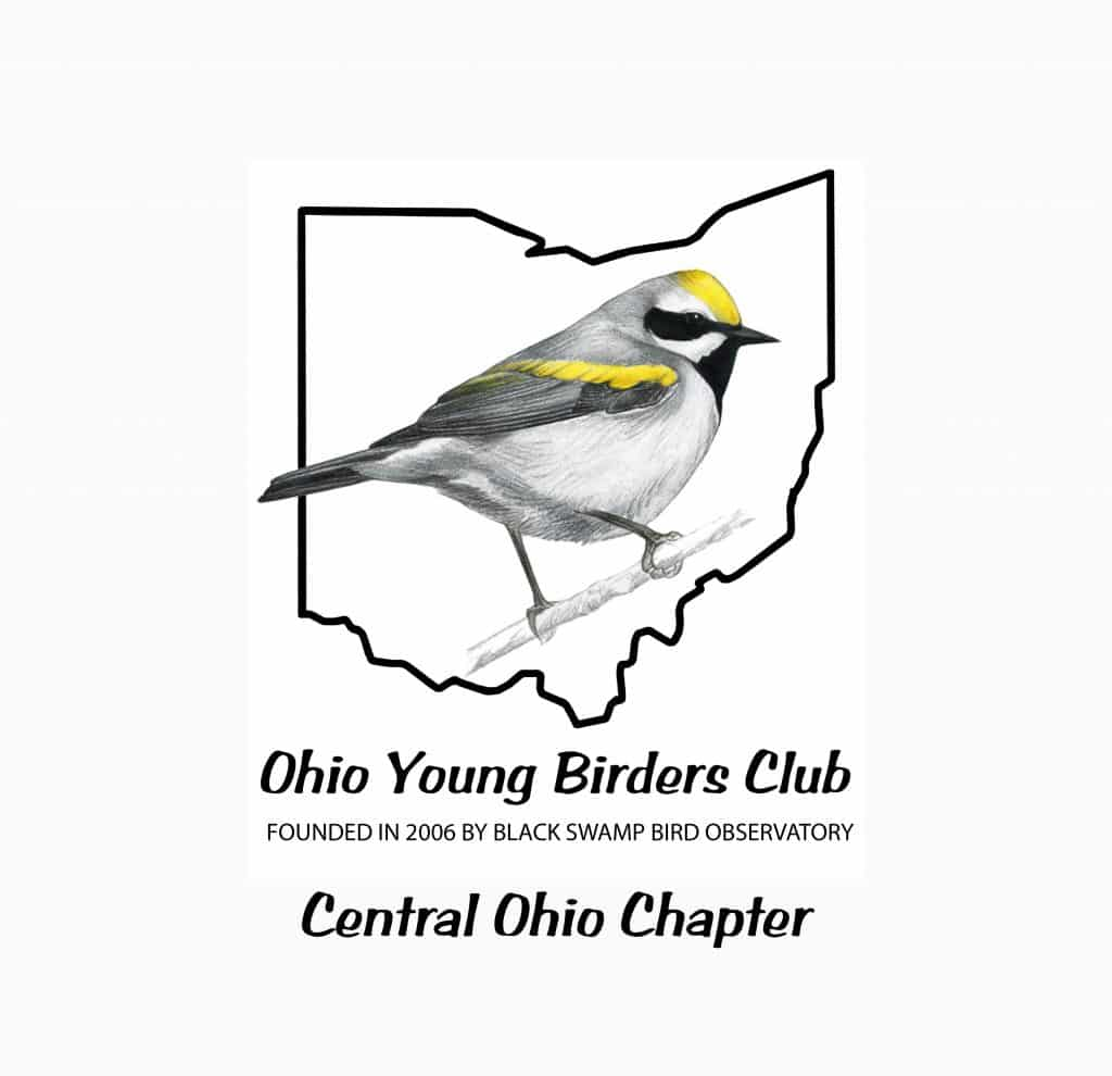 OYBC Logo - Central Chapter