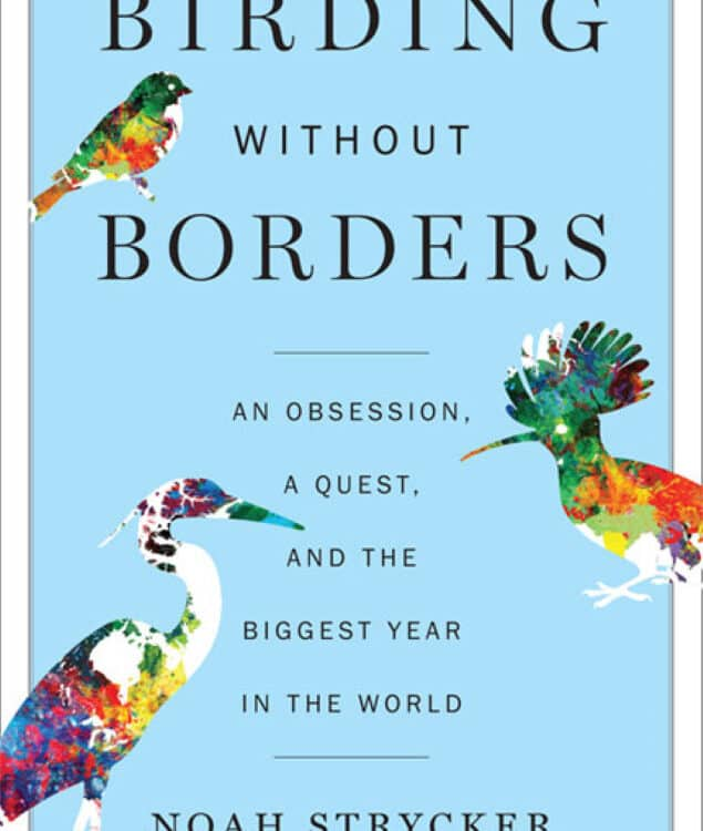 Noah Strycker - Birding Without Borders