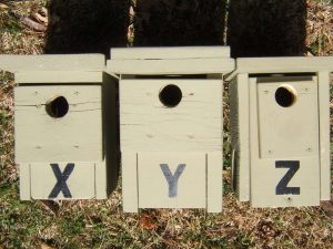 Lettered Nestboxes