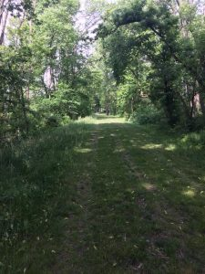 Trail at Calamus - Photo Trudy Brandenburg