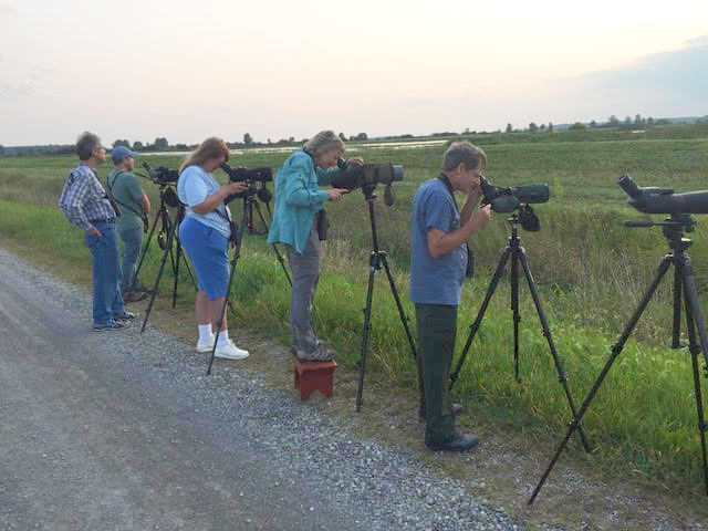 Birding Killdeer Plains by Jennifer Kuehn