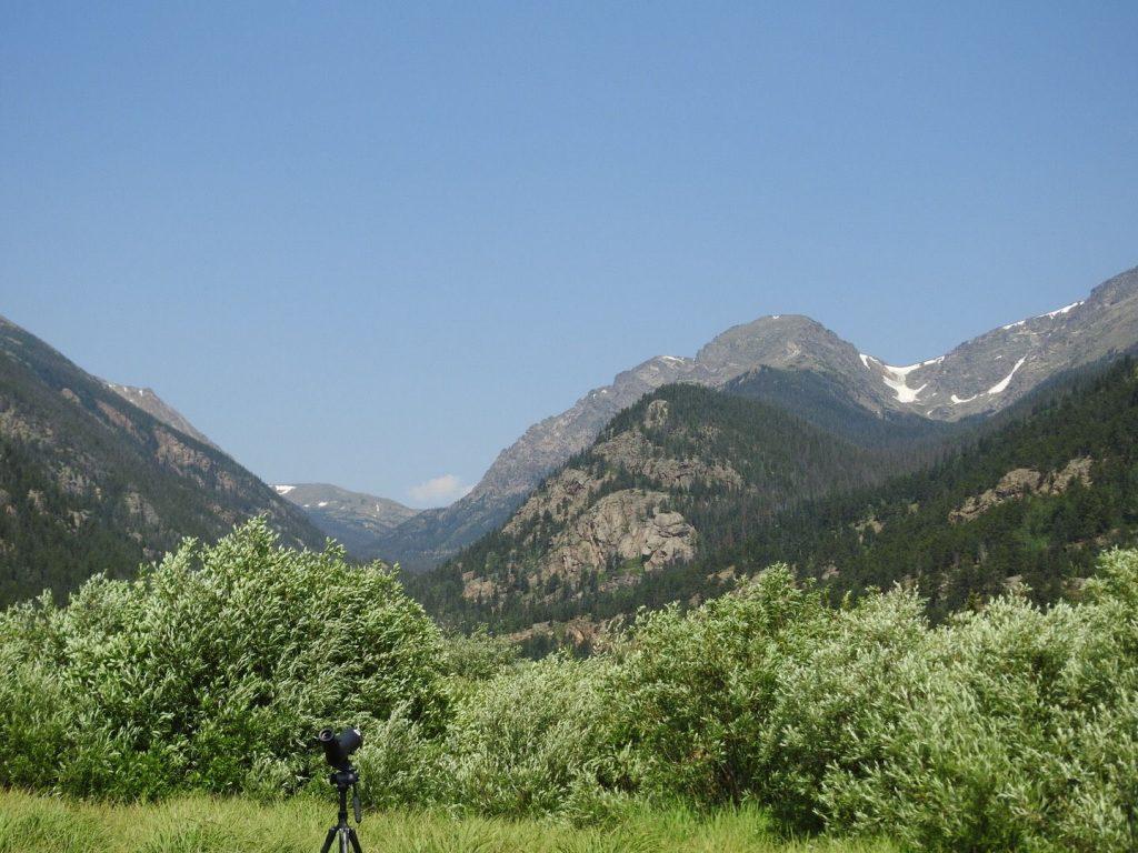 Mountain Meadow - Photo Katelyn Shelton