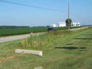 Smith Road Nestbox Site