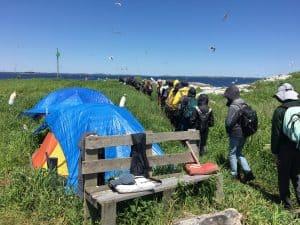 Hog Island Campers