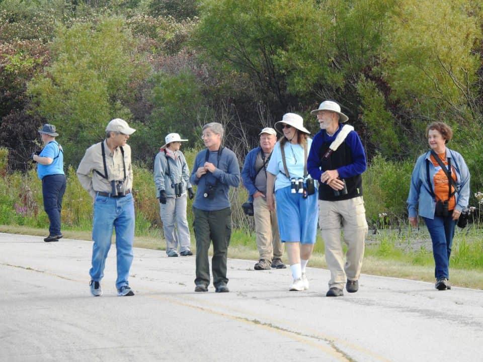 Avids on the Hunt for Limpkin - Photo Lisa Phelps