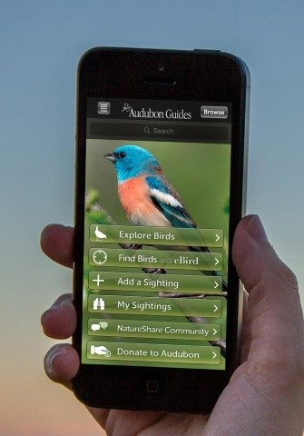Bird Guide App