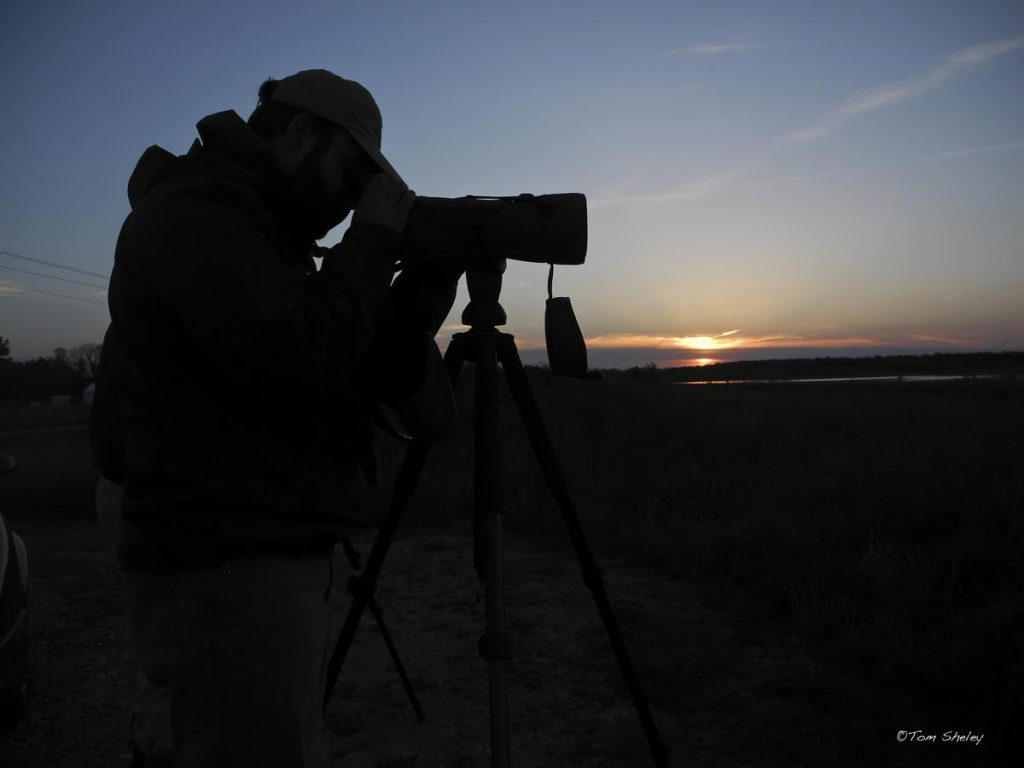 Sundown? Who cares? We just can't stop birding at Big Island! (Tom Sheley)