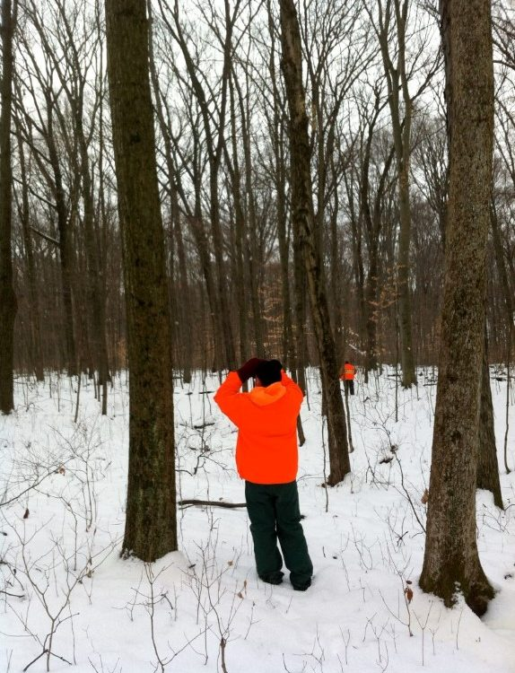 Scanning the trees at Bohannan Woods
